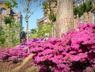 floralien Gent 2016